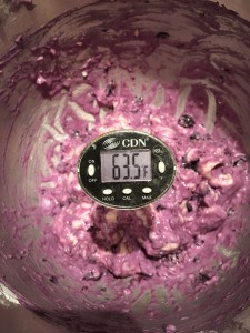 cold blueberry bagel dough