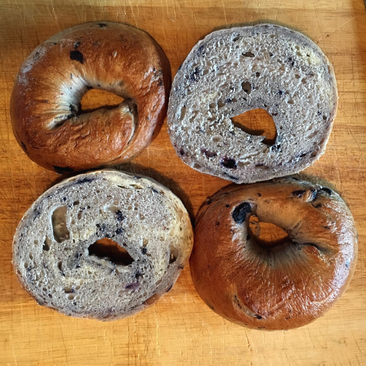 blueberry bagels ny style make bread